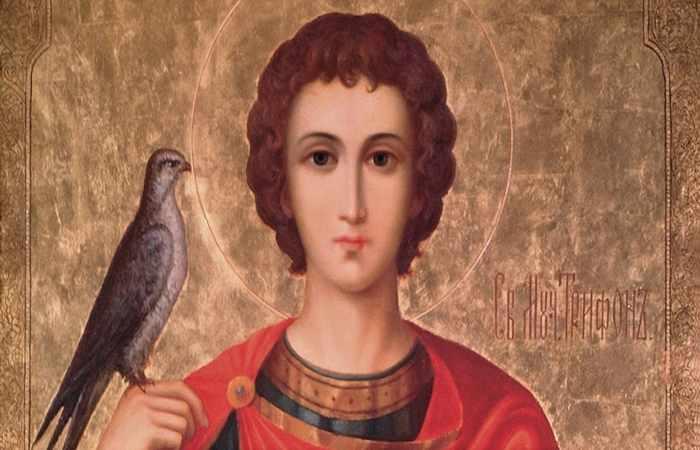 Святой мученик Трифон Зарезан
