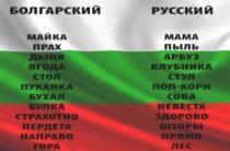 Болгарский язык – курсы